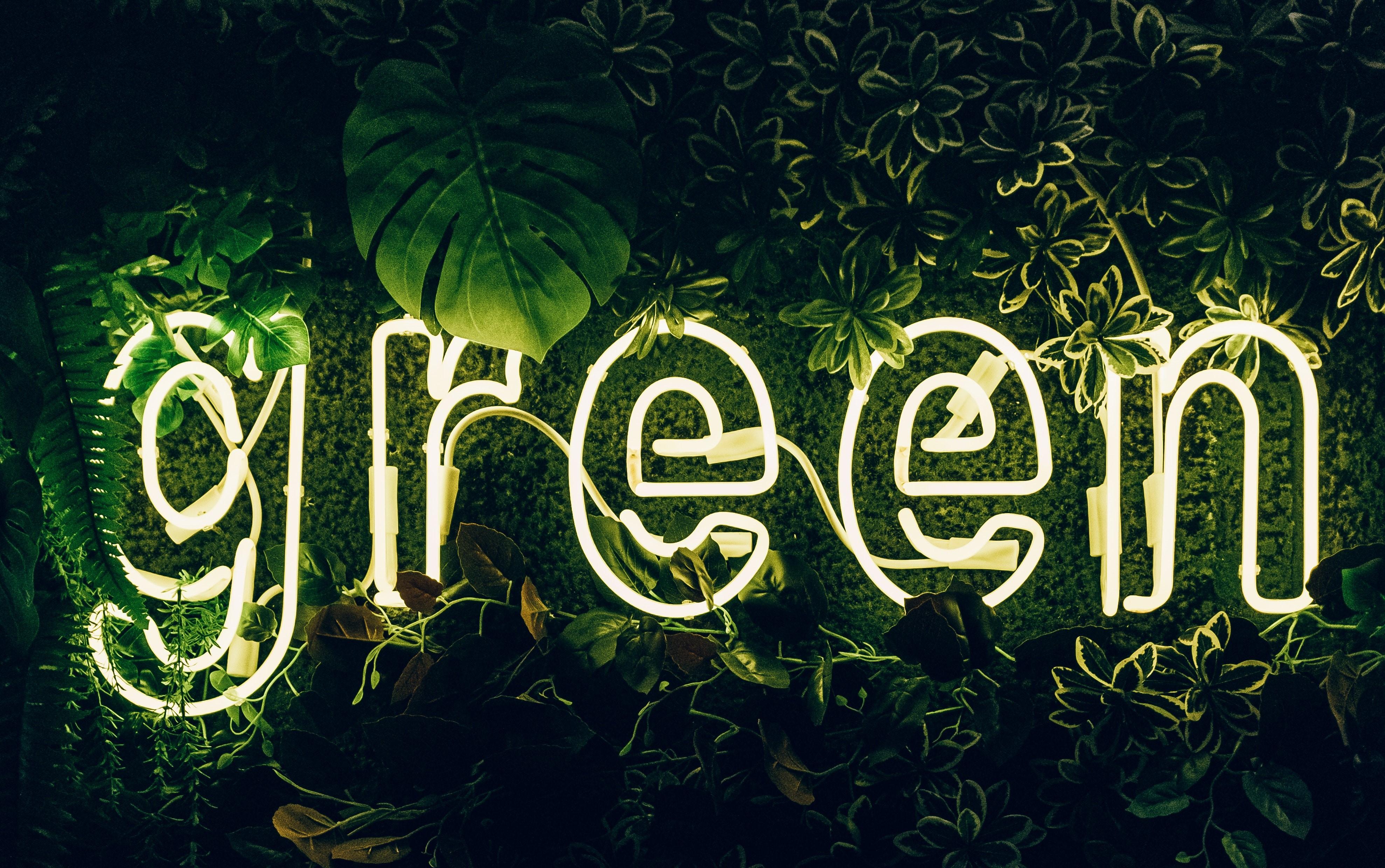 illuminated-green-sign-3626733.jpg