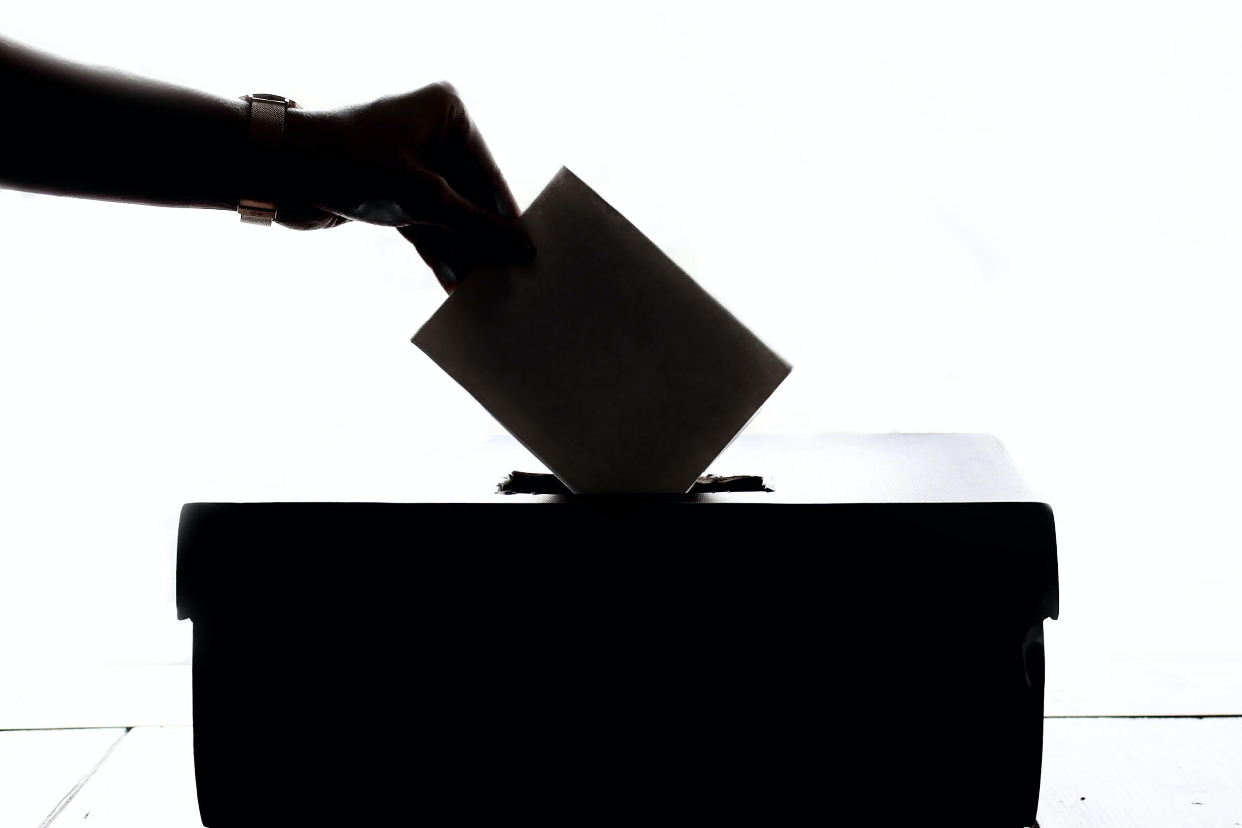 elezioni risultati.jpg