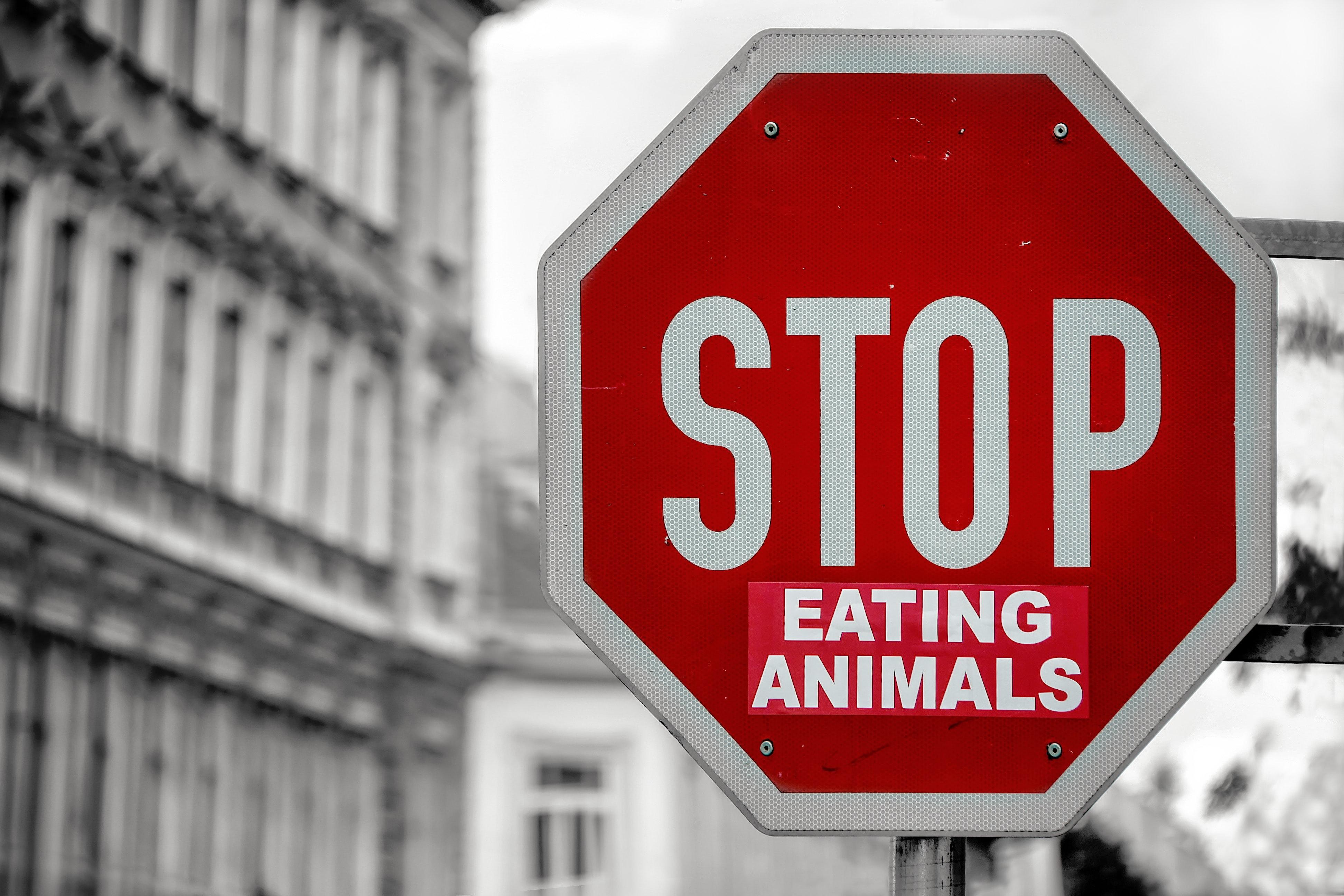 dieta vegana pro contro (3).jpg